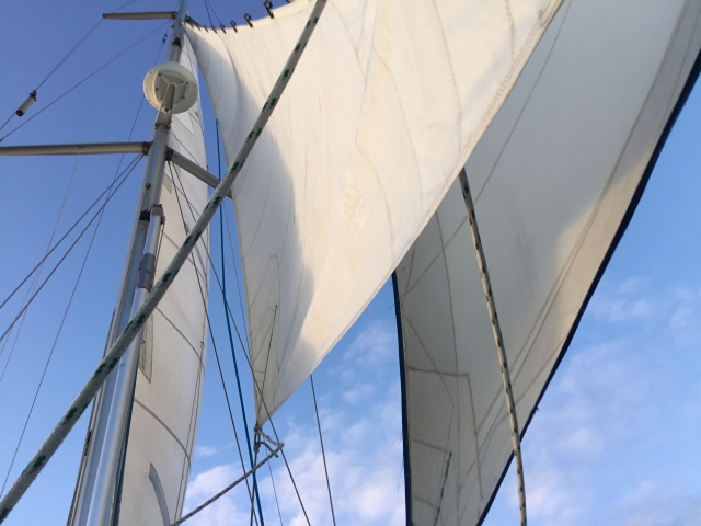 Flying the storm jib as a stay sail - cutter rigged sailing to windward